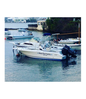 21ft SeaRay 250hp Boat - 50% Share for Sale