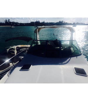 31ft Sea Ray for sale