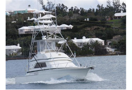 37' Bertram Sports Fishing Boat