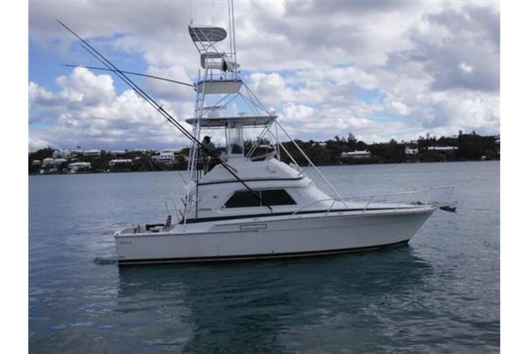 37' Bertram Sports Fishing Boat
