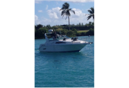 Searay sundance cheap