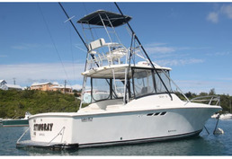 SOLD - STINGRAY - Luhrs 29ft